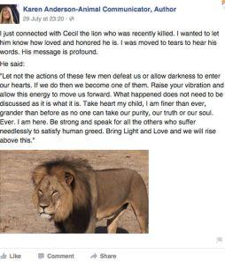 Cecil-Message-325562